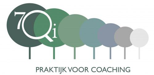 7QI Coaching